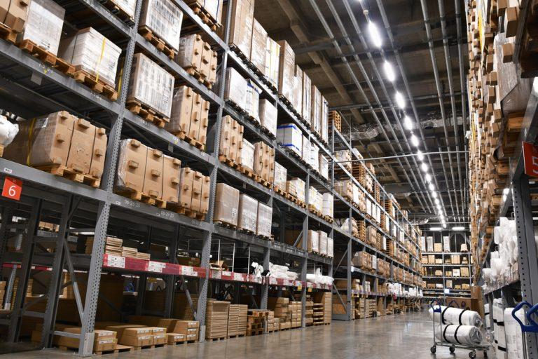 Conheça as principais pragas do ramo industrial e saiba como montar seu calendário de controle