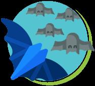 Os morcegos ficam de cabeça para baixo