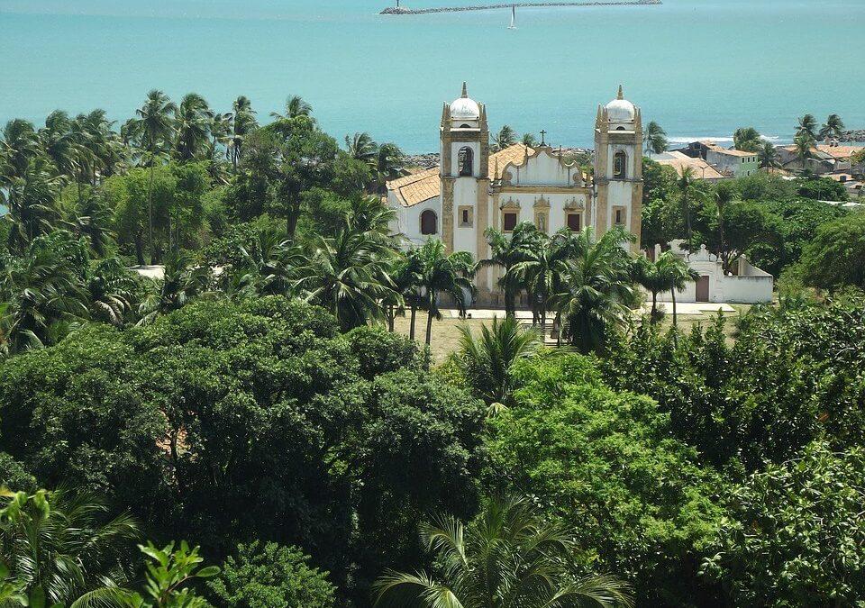 Dedetizadora em Recife: Dicas para Se Prevenir das Pragas Urbanas Mais Comuns