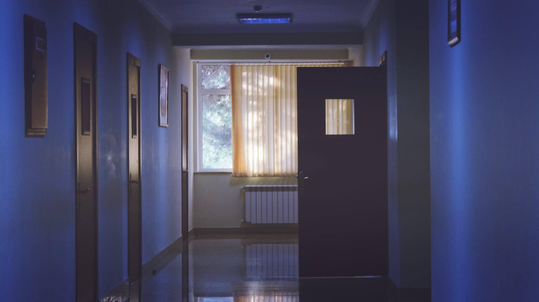 Controle de Pragas em Hospitais no Recife   Dedetizadora em Pernambuco