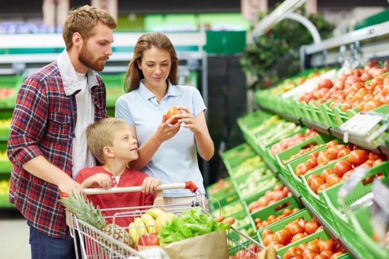 Controle de Pragas em Supermercado: Conheça um dos Métodos Mais Seguros e Eficientes | Rota Uniprag