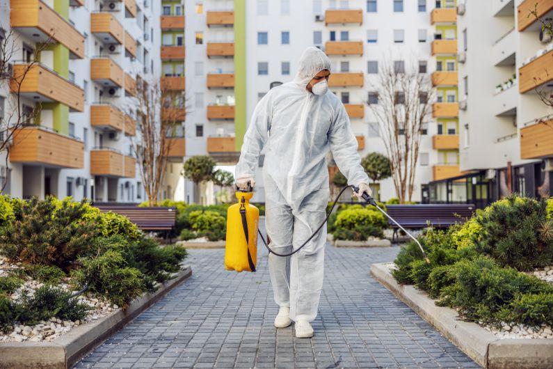 Dedetização de condomínios áreas que devem ter o controle reforçado