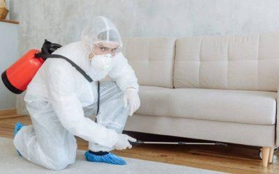 Dedetização de condomínios: quais os problemas provocados pelas pragas no local?